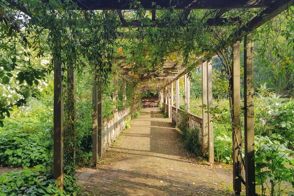 Battersea Park English Garden