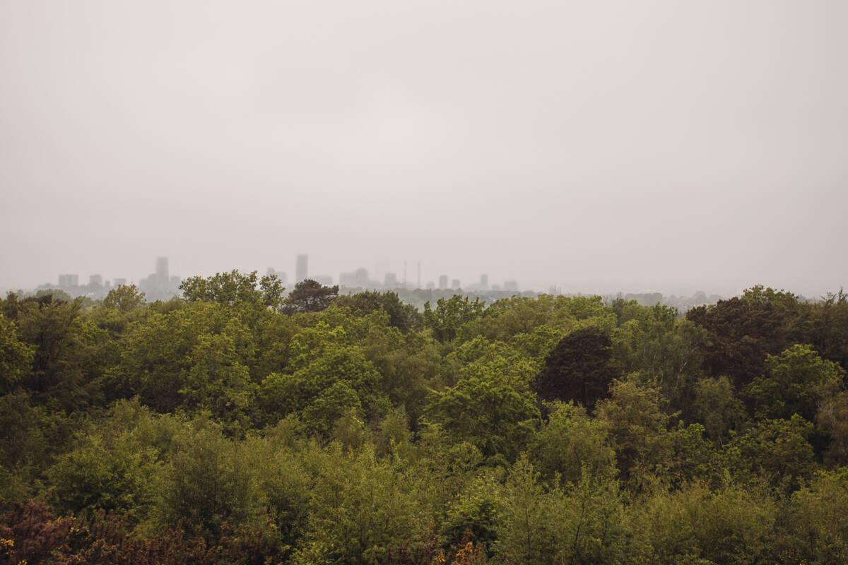 Shooters Hill Croydon
